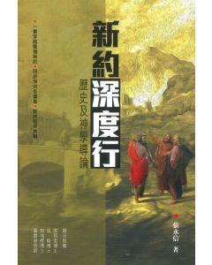 新約深度行:歷史及神學導論